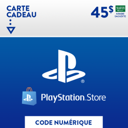 Chargeur Double Manette PS4